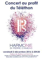 Affiche du Concert pour le Téléthon 2016